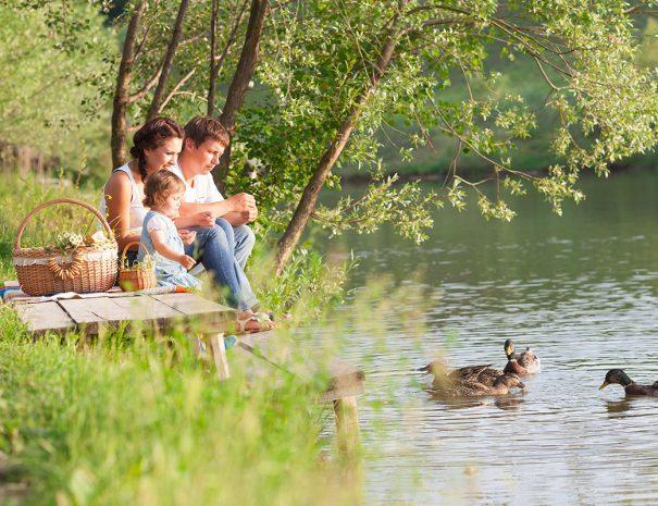 Gezin zit te picknicken aan het water en eendjes te voeren