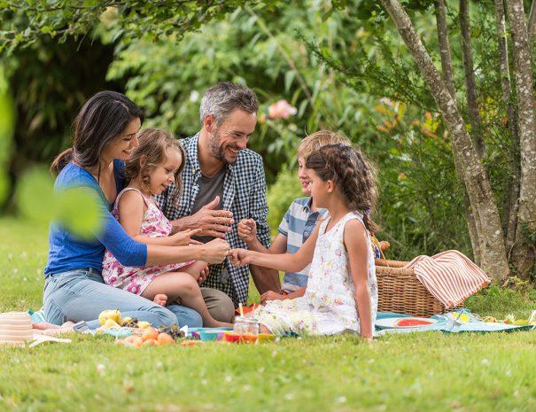 Familie gaat picknicken op een van de eilanden in het veerse meer