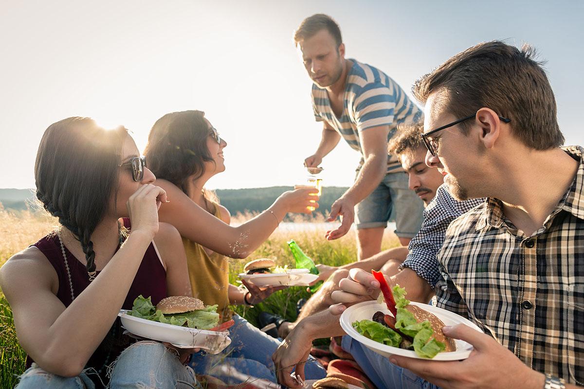 Groep vrienden die picknicken aan het veerse meer