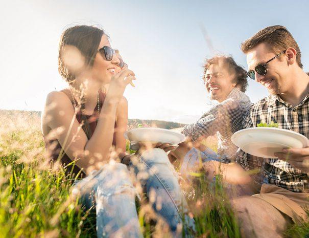 Vrienden picknicken op een van de eilanden van het Veerse meer